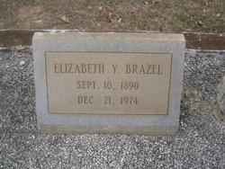 Elizabeth Y. Brazel