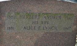 Alice F <i>Lynch</i> Andrew