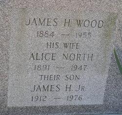Alice <i>North</i> Wood