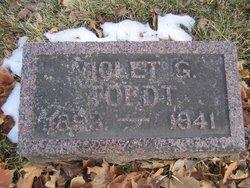 Violet Gladys <i>Gutherie</i> Toedt