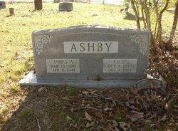 James Andrew Jim Ashby