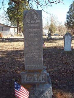 Gabriel M Hamilton