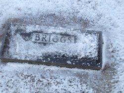 Amy <i>Peck</i> Briggs