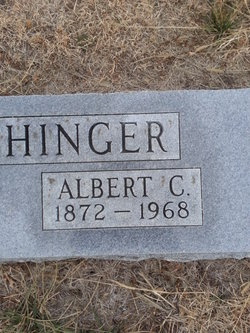 Albert C Bertschinger
