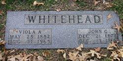 Viola A <i>Whitehead</i> Whitehead