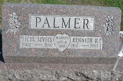 Icel Ellen <i>Sevits</i> Palmer