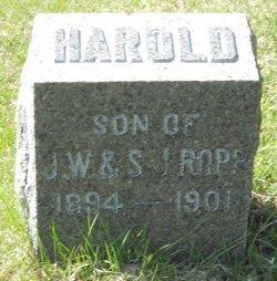 Harold William Ropp