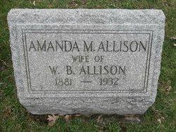 Amanda M. Allison