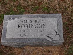 James Burl Robinson