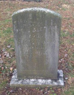 Sarah Frances Alexander