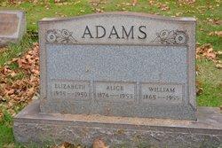 Alice M <i>Davis</i> Adams