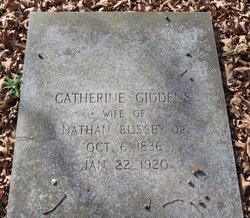 Catherine <i>Giddens</i> Bussey