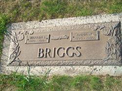 Warren Ivan Briggs