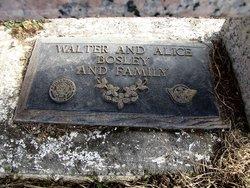 Walter Raymond Bosley