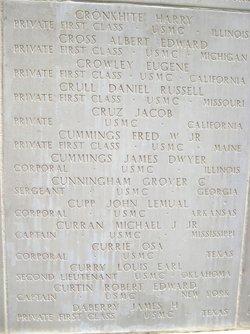Capt Robert Edward Curtin