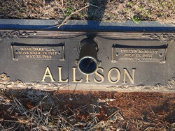 Mary Evelyn <i>McNeely</i> Allison