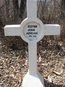 Sr Joan Adrian