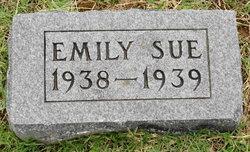 Emily Sue Brisendine