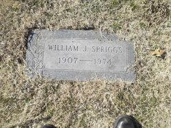 Williams Jennings Bryan Spriggs