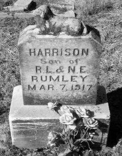 Harrison Rumley