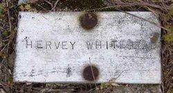 Harvey B. Whitehead
