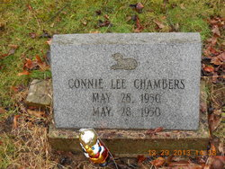 Connie Lee Chambers