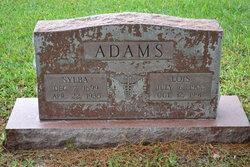 Dr Sylba Adams