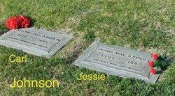 Jessie May <i>Barr</i> Johnson