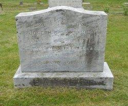 Anna L Barnett