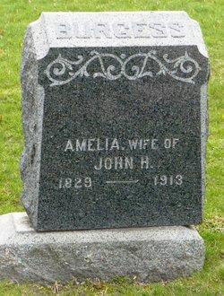 Amelia Burgess
