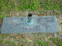 George Willis Abney