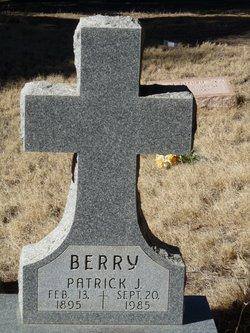 Patrick J Berry