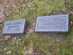 Edmund Nelson Carpenter