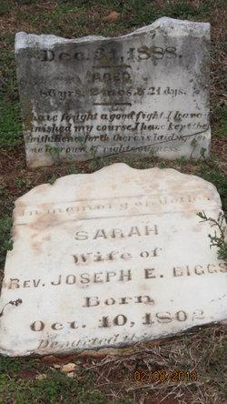 Sarah Elizabeth <i>McNeil</i> Biggs