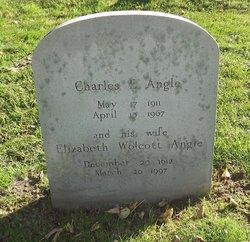 Elizabeth Wolcott <i>Wolcott</i> Angle