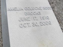 Amelia Golucke <i>Rood</i> Brooks