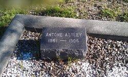 Antone Astley