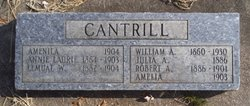 Anna Laurie <i>Ireland</i> Cantrill