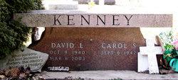 David L Kenney