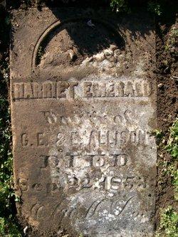 Harriet Emerald Allison