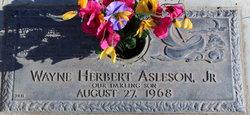 Wayne Herbert Asleson, Jr