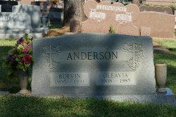 Burvin Alexander Anderson