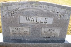 Ines Lee Susie <i>Bullion</i> Walls