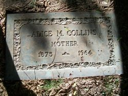 Mrs Alice Maude Allie <i>Griffin</i> Collins
