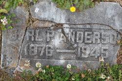 Carl Peter Anderson