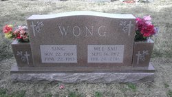 Mee Sau Wong