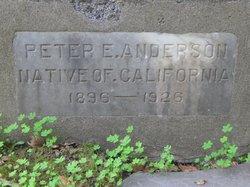 Peter E. Anderson