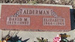 David M. Alderman