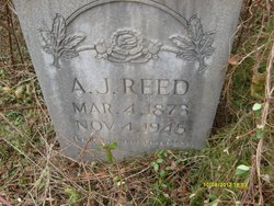 Andrew Jackson Andy Reed
