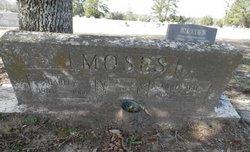 Annie Mae <i>Morgan</i> Moses